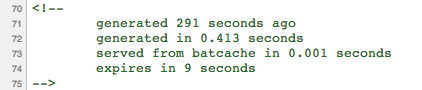 Batcache Comments in page source