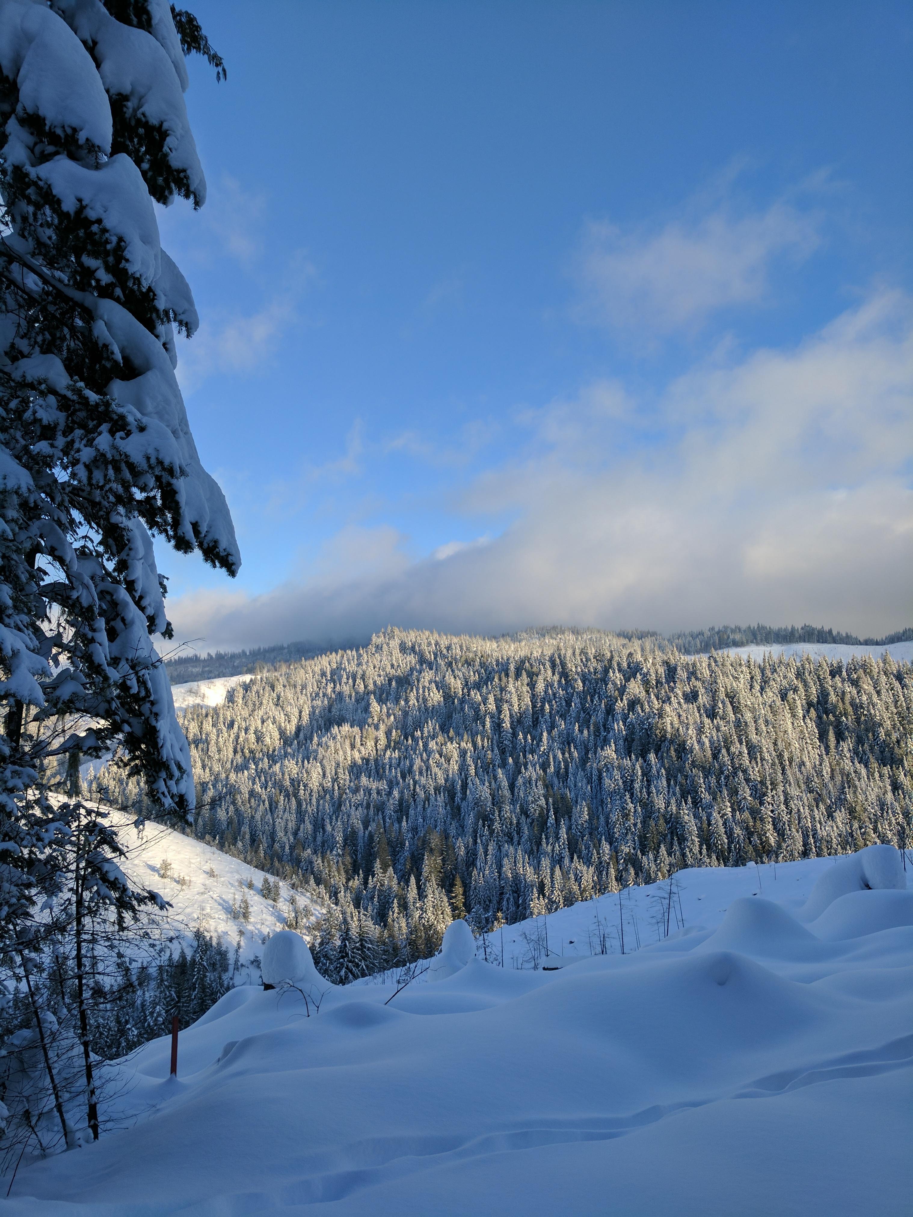 snowshoeing at the palouse divide nordic ski area  u2013 jeremy felt